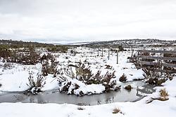 Snow near the turnoff toward Little Pine Lagoon in Tasmania's Central Highlands