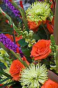 White Orange Purple Flowers
