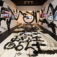 "VENICE, ITALY - JUNE 02:  Interiors of the installation ""Frogtopia-Hongkornucopia"" at the opening of Hong Kong Pavillion on June 2, 2011 in Venice, Italy. This year's Biennale is the 54th edition and will run from June 4th until 27 November."