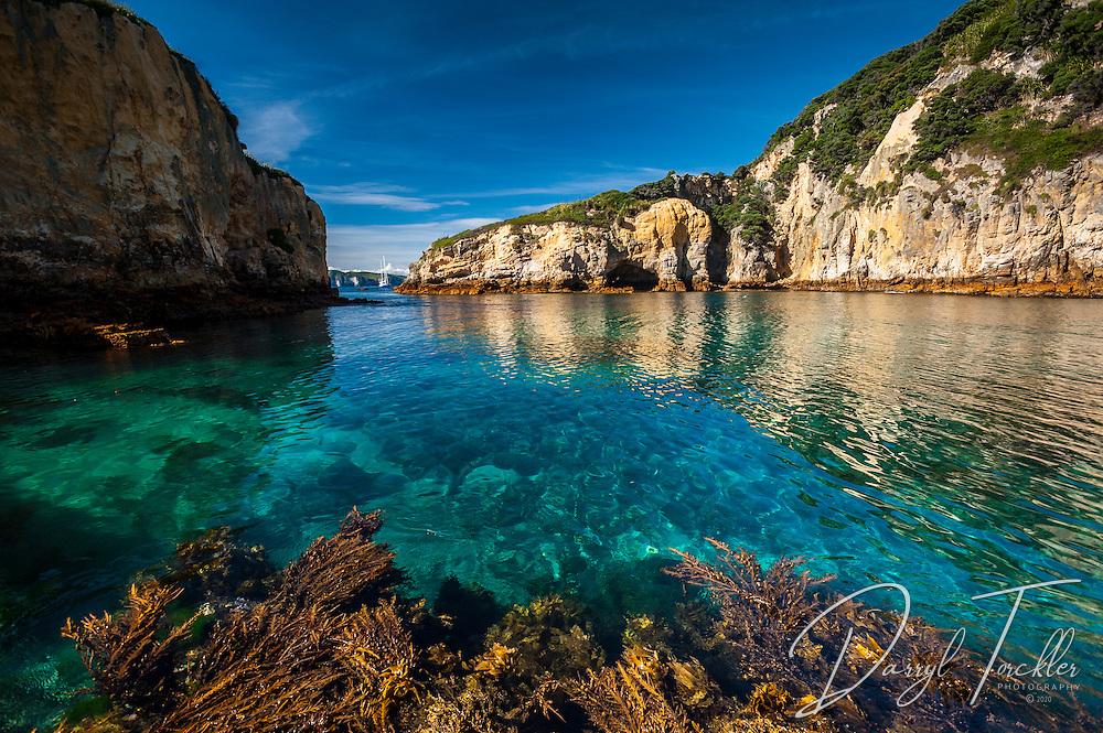 Calm clear waters in the Flax Islands, Mokohinau Islands. Hauraki Gulf. New Zealand.