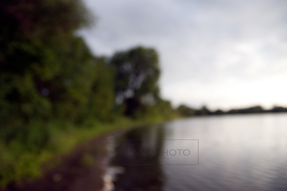 Impressionistic shoreline scene of Lake Nokomis in Summer