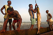 Fishermen smile at the monring's catch, a huge carp, at Wagenia Falls on the Congo River, near Kisangani, DR Congo.