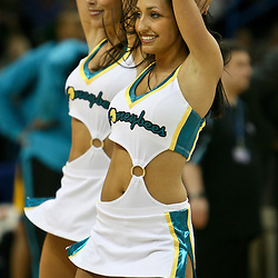 March 23, 2007: New Orleans Hornets Honeybees dancers on the court during a NBA game the New Orleans Hornets and the Los Angeles Lakers at the New Orleans Arena in New Orleans, Louisiana.