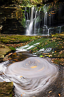 Elakala Falls on Shays Run, Blackwater Falls State Park David West Virginia.