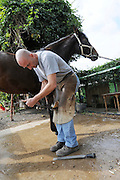 Farrier preparing a horse's hoof for new shoe