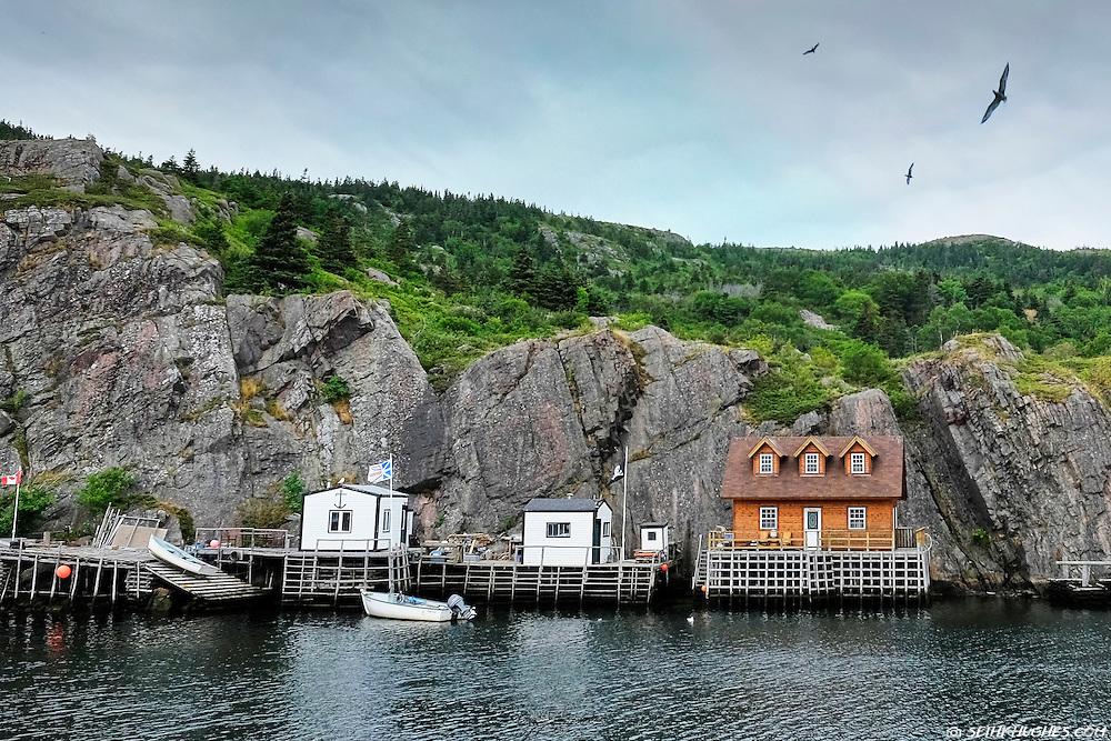 Small fishing cottages in Quidi Vidi Harbor, St. John's, Newfoundland, Canada