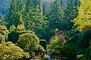 Sunken Gardens, Butchart Gardens, Victoria, Canada