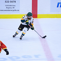 1st year forward Merissa Zerr (24) of the Regina Cougars in action during the Women's Hockey Home Game on November 26 at Co-operators arena. Credit: Arthur Ward/Arthur Images