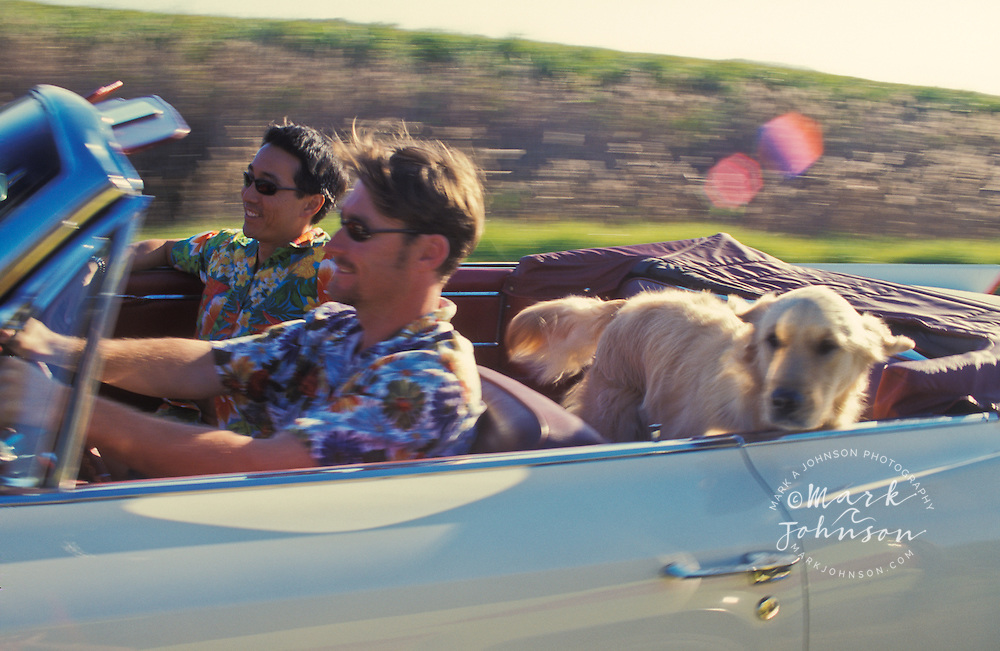 2 male friends riding in convertible Cadillac