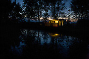 Nightfall on trees and the campsite in Reedham on the Norfolk Broads.