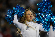 January 24, 2016: Carolina Panthers vs Arizona Cardinals. Carolina Panthers cheerleader