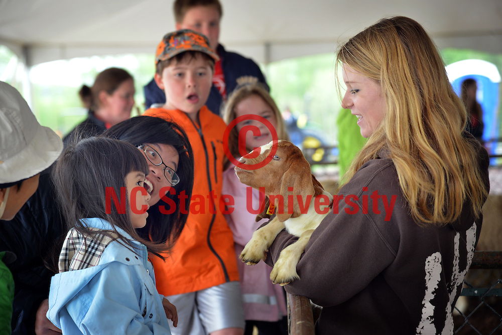 Families get the opportunity to visit farm animals during CALS' Animal Farm Days.
