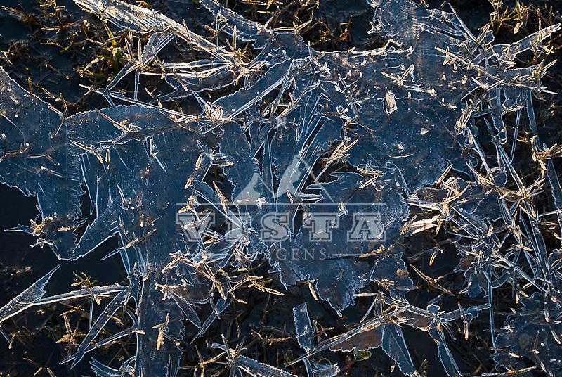 Gelo na margem da lagoa da Mangueira, aurora no posto santa marta, Estacao Ecologica do Taim, Rio Grande do Sul, Brasil. foto de Ze Paiva/Vista Imagens