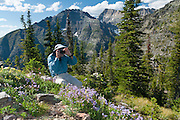 A man photographs flowers at Numa Ridge Lookout, in Glacier National Park, Montana, USA