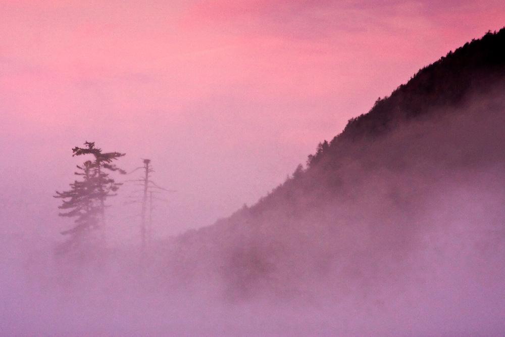 Fog over Moss Lake at Sunrise