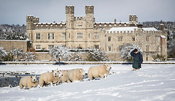 © Licensed to London News Pictures. 27/02/2018. Leeds Castle, UK.  Heavy snow has closed Leeds Castle for the day. Freezing temperatures and heavy snow are affecting large parts of Kent.  Photo credit: Peter Macdiarmid/LNP