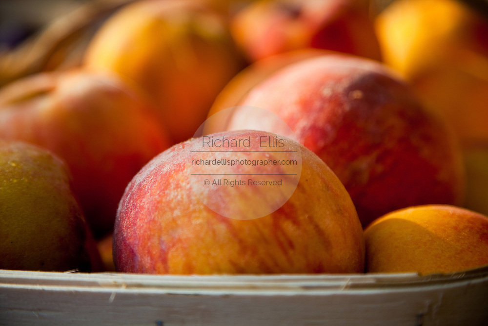 Fresh South Carolina peaches at an organic local produce farmers market in Marion Square in Charleston, South Carolina (photo by Charleston SC photographer Richard Ellis)
