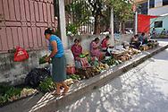 Viaggio in Messico, Palenque cascate,1-2 Dicembre 2016 © foto Daniele Mosna