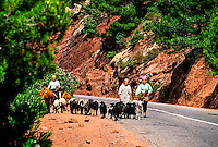 Along the route from Marrakech to Ouarzazate through the High Atlas Mountains), Morocco