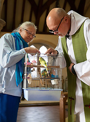 © Licensed to London News Pictures. 06/10/2019. Selsey, UK. Father Andy Wilkes blesses Buddie the budgie during the annual Service of Blessing of Animals at St Peter's Church in Selsey, West Sussex. Parishioners bring their pets to the church for the annual service after earlier attending a Harvest Festival celebration. Photo credit: Peter Macdiarmid/LNP