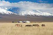 The landscape of western Mongolia.