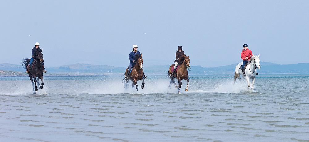 Horse & Pony Treking at Bertra Beach, Clewbay, Co.Mayo Ireland. Pic: Michael Mc Laughlin