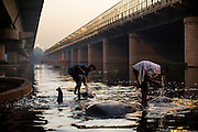 28th May 2014, Yamuna River, New Delhi, India. Mahouts stand on bathing elephants in the Yamuna river  in New Delhi, India on the 28th May 2014<br />