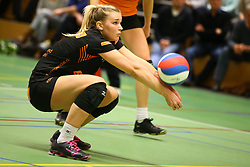 20160319 NED: Volleybal: Sliedrecht Sport - Springendal Set Up 65, Sliedrecht<br />