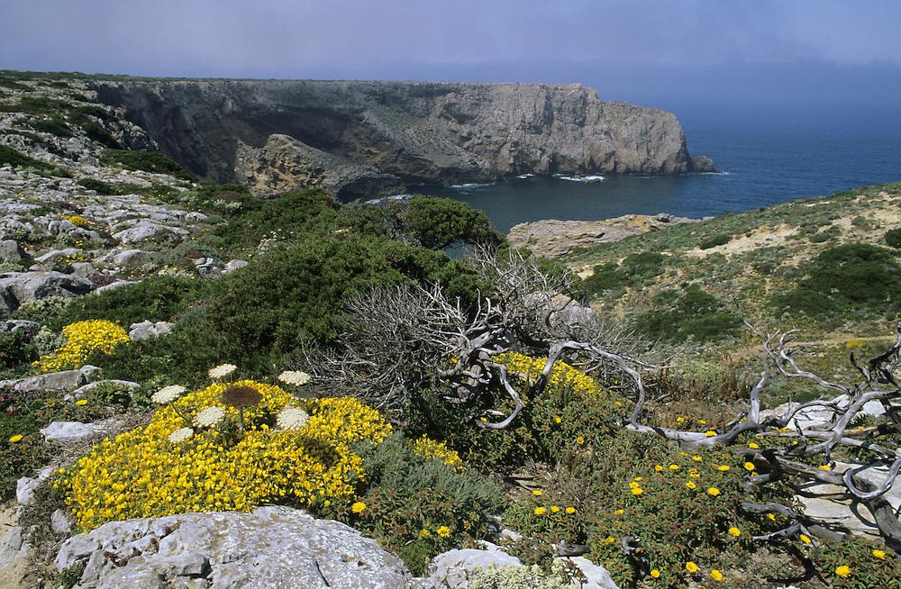 Cape St Vincent