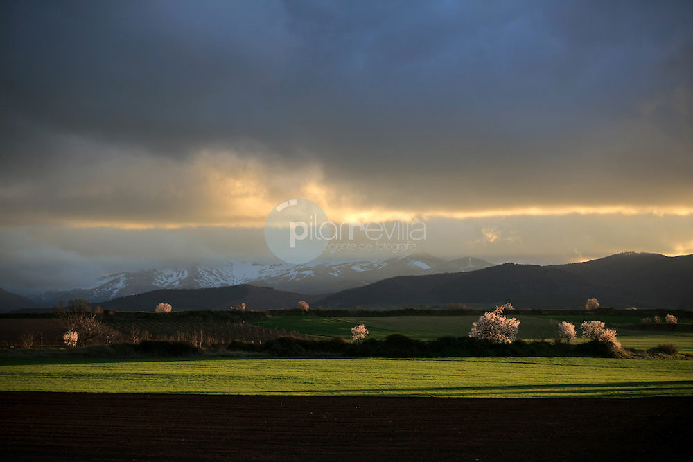 Alesanco. La Rioja ©Daniel Acevedo / PILAR REVILLA