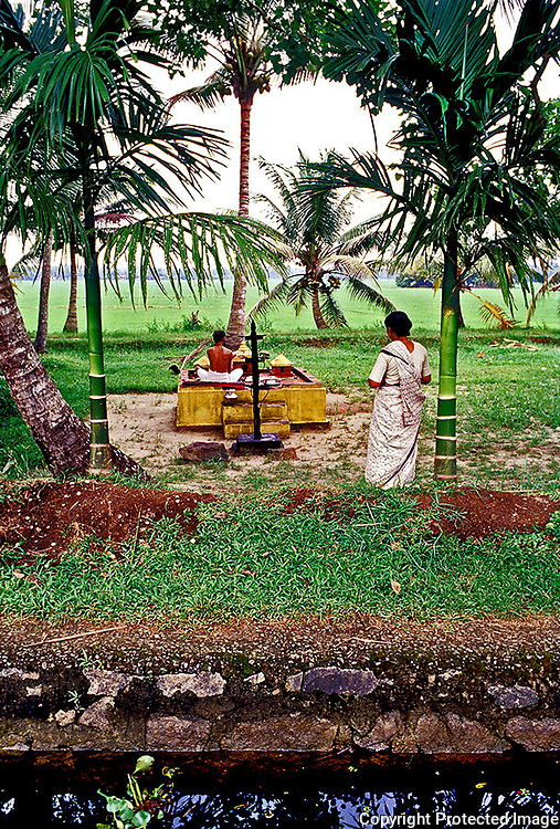 A Hindu priest performing a ritual at a temple by the famous backwaters of Kerala,south India.This photograph taken from a boat shows a part of the backwater canal in the foreground and the great sweep of green paddy fields in the far background.