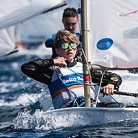 Optimax Sails