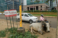 Gurgaon, le quartier des affaires de New Delhi, au sud de la ville. Gurgaon, an hour south of New Delhi is the new CDB.