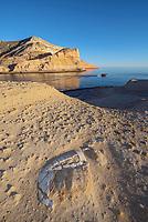 Fossilized turtle and zodiac at Punta Colorado on Isla San Jose in the Gulf of California, Baja Sur, Mexico.