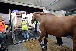 Departure of the horses to Kentucky from Liege airport<br /> Alltech FEI World Equestrian Games - Kentucky 2010<br /> © Dirk Caremans