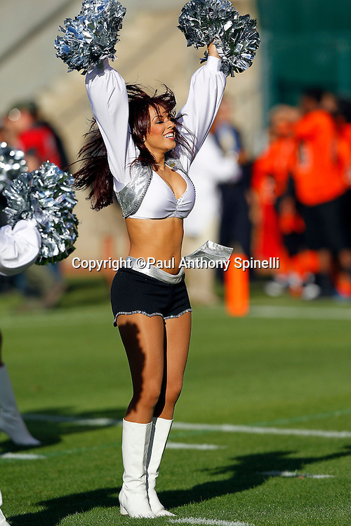 An Oakland Raiders cheerleader smiles and does a dance routine during the NFL preseason week 3 football game against the San Francisco 49ers on Saturday, August 28, 2010 in Oakland, California. The 49ers won the game 28-24. (©Paul Anthony Spinelli)