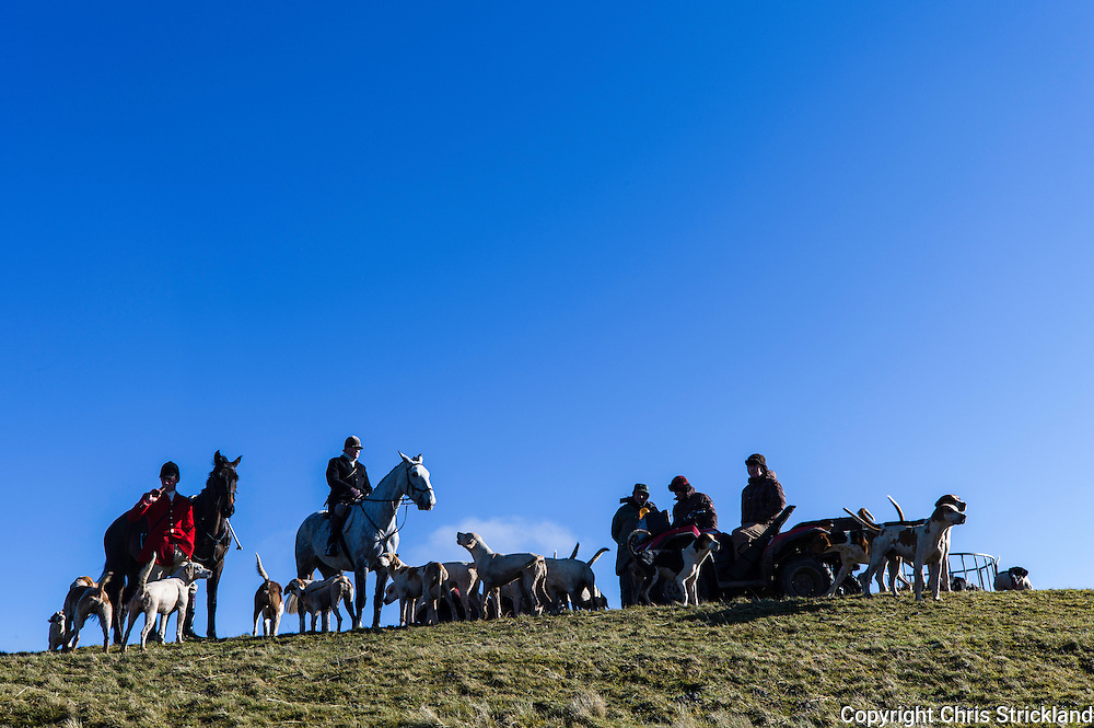 Jedburgh, Scottish Borders, UK. 18th February 2016. Huntsman, hounds, horses, and marksmen of the Jedforest Hunt in Scotland. © Chris Strickland / Alamy Live news