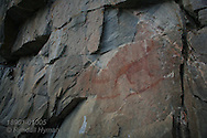 Centuries-old Ojibwe pictograph of mythological creatures and canoe hunting party is one of several story scenes that adorn Agawa Rock in Lake Superior Provincial Park, Ontario; Canada.