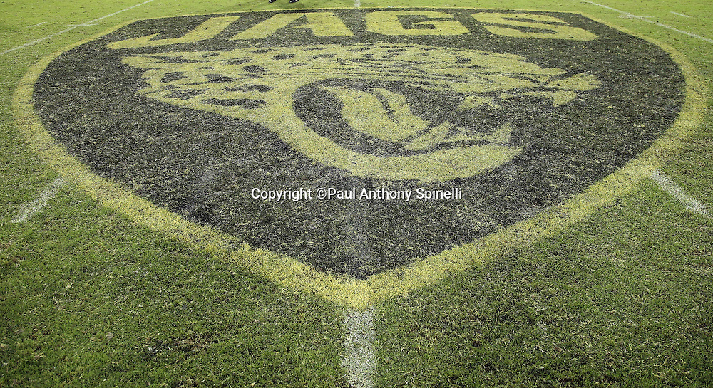 The Jacksonville Jaguars logo is painted on the field for the Jacksonville Jaguars 2015 week 11 regular season NFL football game against the Tennessee Titans on Thursday, Nov. 19, 2015 in Jacksonville, Fla. The Jaguars won the game 19-13. (©Paul Anthony Spinelli)