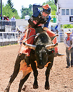 Bull riding is one of the most popular events at Cheyenne Frontier Days, the world's largest outdoor rodeo and western celebration.