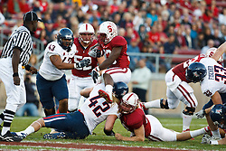 November 6, 2010; Stanford, CA, USA;  Stanford Cardinal running back Stepfan Taylor (33) is tackled by Arizona Wildcats defensive end Brooks Reed (42) during the first quarter at Stanford Stadium.