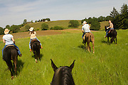 Equestrian Wine Tours leads horseback riding journeys throughout the Northern Willamette Valley wineries and vineyards.