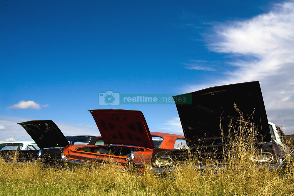 July 21, 2019 - Cars In A Junkyard With Their Trunks Open (Credit Image: © Richard Wear/Design Pics via ZUMA Wire)