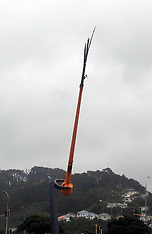 Wellington-Lightening strikes Kilbirnie wind sculpture