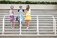 Ladies chat between the racing during day three of the May Festival at Goodwood Racecourse, Chichester. PRESS ASSOCIATION Photo. Picture date: Saturday May 24, 2014. See PA story RACING Goodwood. Photo credit should read: Chris Ison/PA Wire.