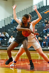 20 February 2020:  Lincoln Way West Warriors v Normal Community West Wildcats for the IHSA Girl's Regional in the gym at Normal Community in Normal IL<br /> <br /> 1