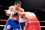 Marco Antonio Barrera trades with Amir Khan in the first round during the WBA and WBO Inter-Continental Lightweight title fight between Amir Khan and Marc Antonio Barrera at the MEN Arena on March 14, 2009 in Manchester, England.