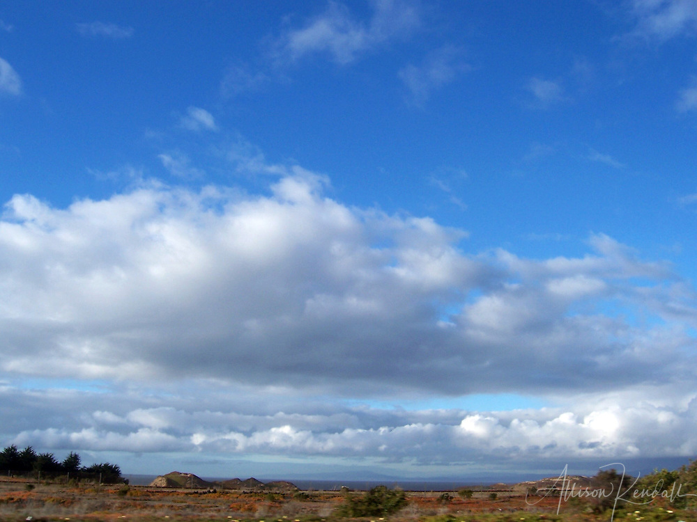 Cloudy skies over the dunes of Fort Ord, along Monterey Bay