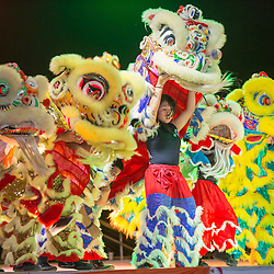 Lunar New Year Celebration 2015