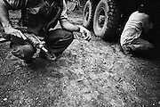 French guiana, ipoussing.<br /> <br /> Exploitation aurifere. Livraison. L'amalgame d'or et de boues preleve sur le chantier va etre conduit au camp pour etre traite. Gilet pare-balles et armes automatiques assurent une protection efficace contre les eventuelles bandes de pistoleros qui rodent en foret.
